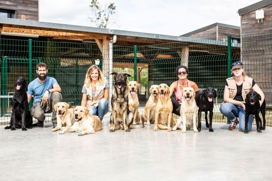 Ecole de chiens guides