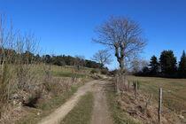Le Puy de Montchaud