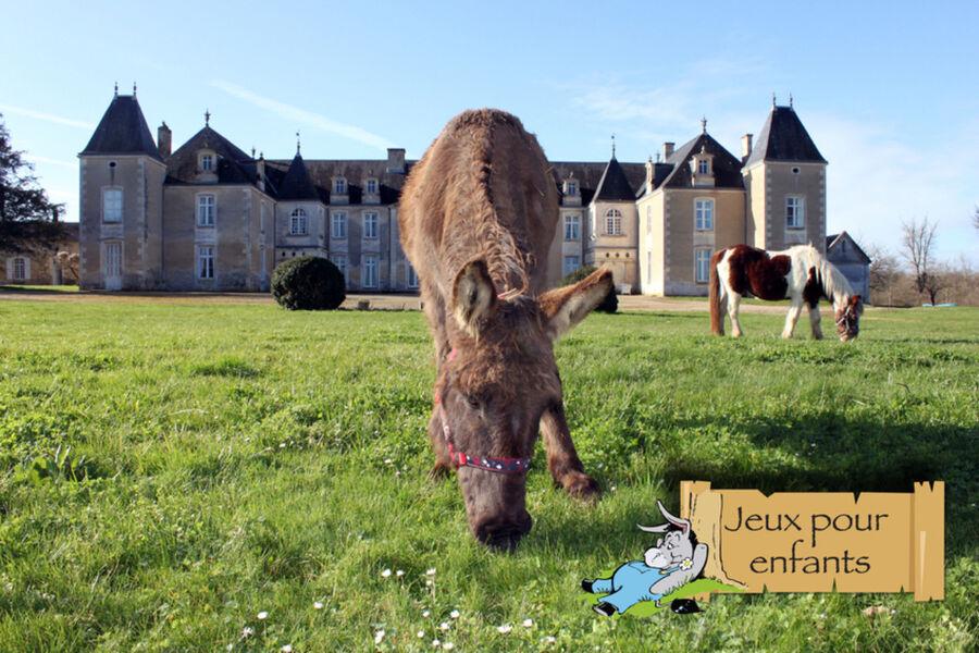 Chateau en fond, un âne et un poney en train de manger lherbe sur le devant