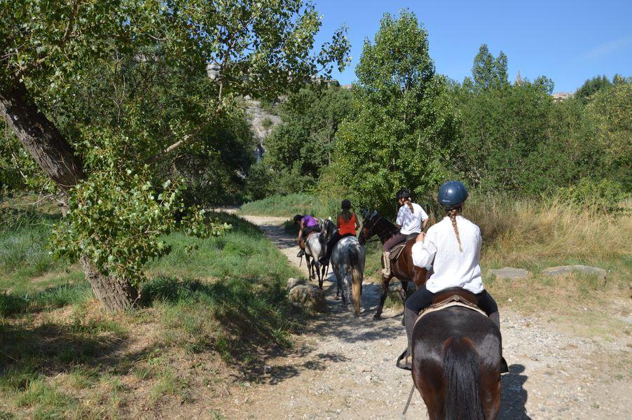 Centre Equestre le Mazet