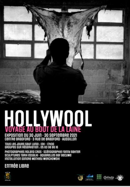 Exposition Hollywool