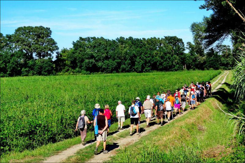 Sortie découverte et patrimoine : Mondragon par les collines - Bollène