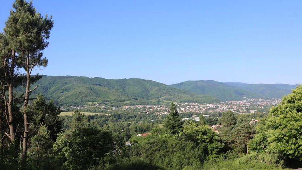 Forêt Domaniale et Communale de la Montagne Noire