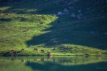Refuge Entre le Lac - Peisey Nancroix