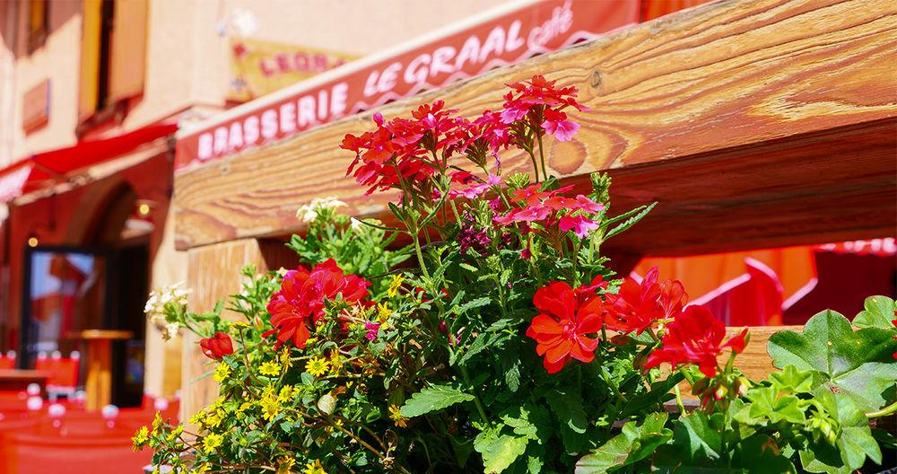 Le Graal Café - Bar - Brasserie - Le Graal Café - Bar - Brasserie - Le Graal Café - Bar - Brasserie
