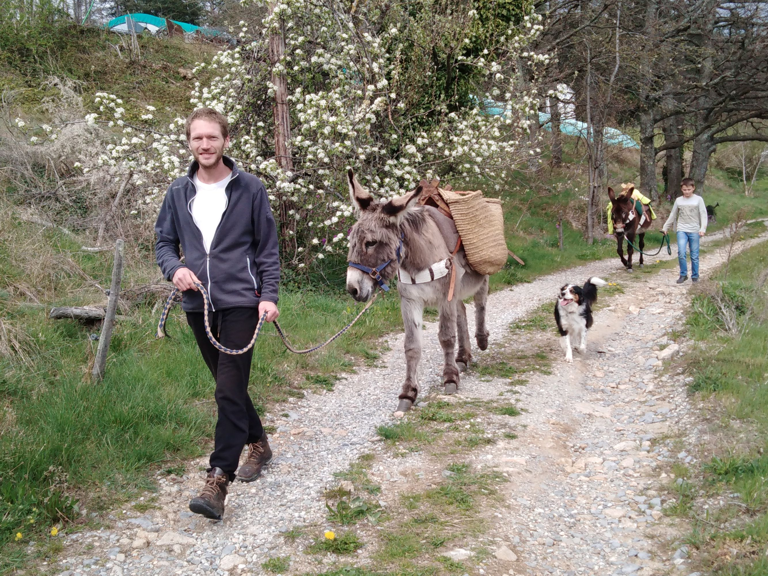 Sportactiviteiten : Ânes sans frontières - randonnées avec des ânes bâtés