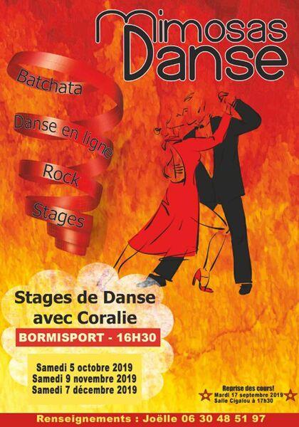 Stage Mimosas danse