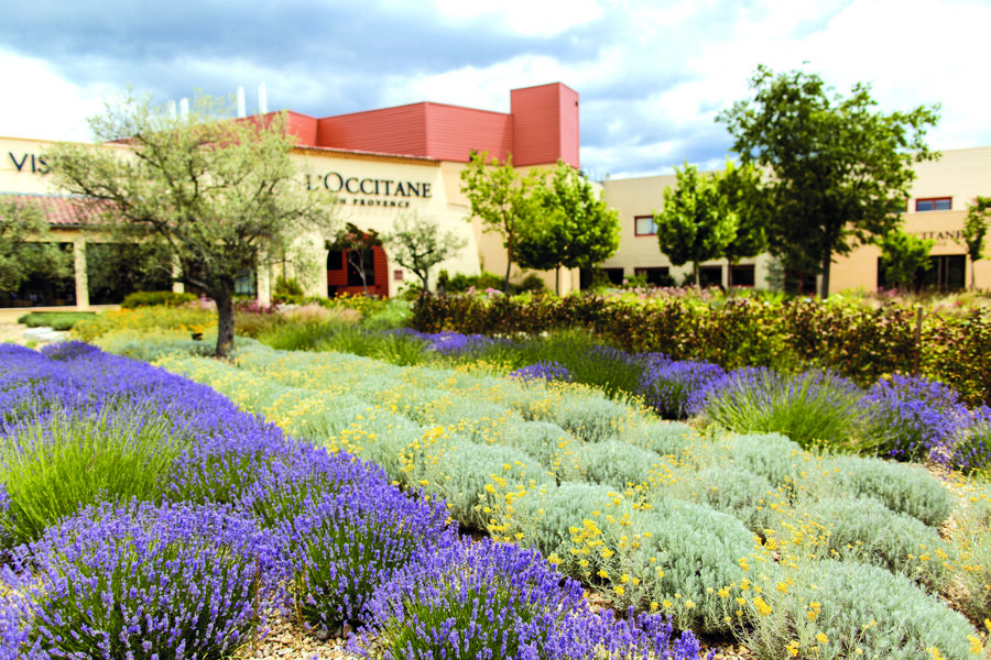 Visite Jardin L\'Occitane
