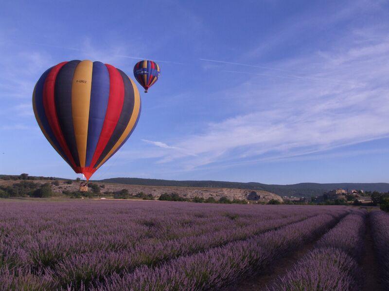 Ballon au dessus d'un champ de lavande