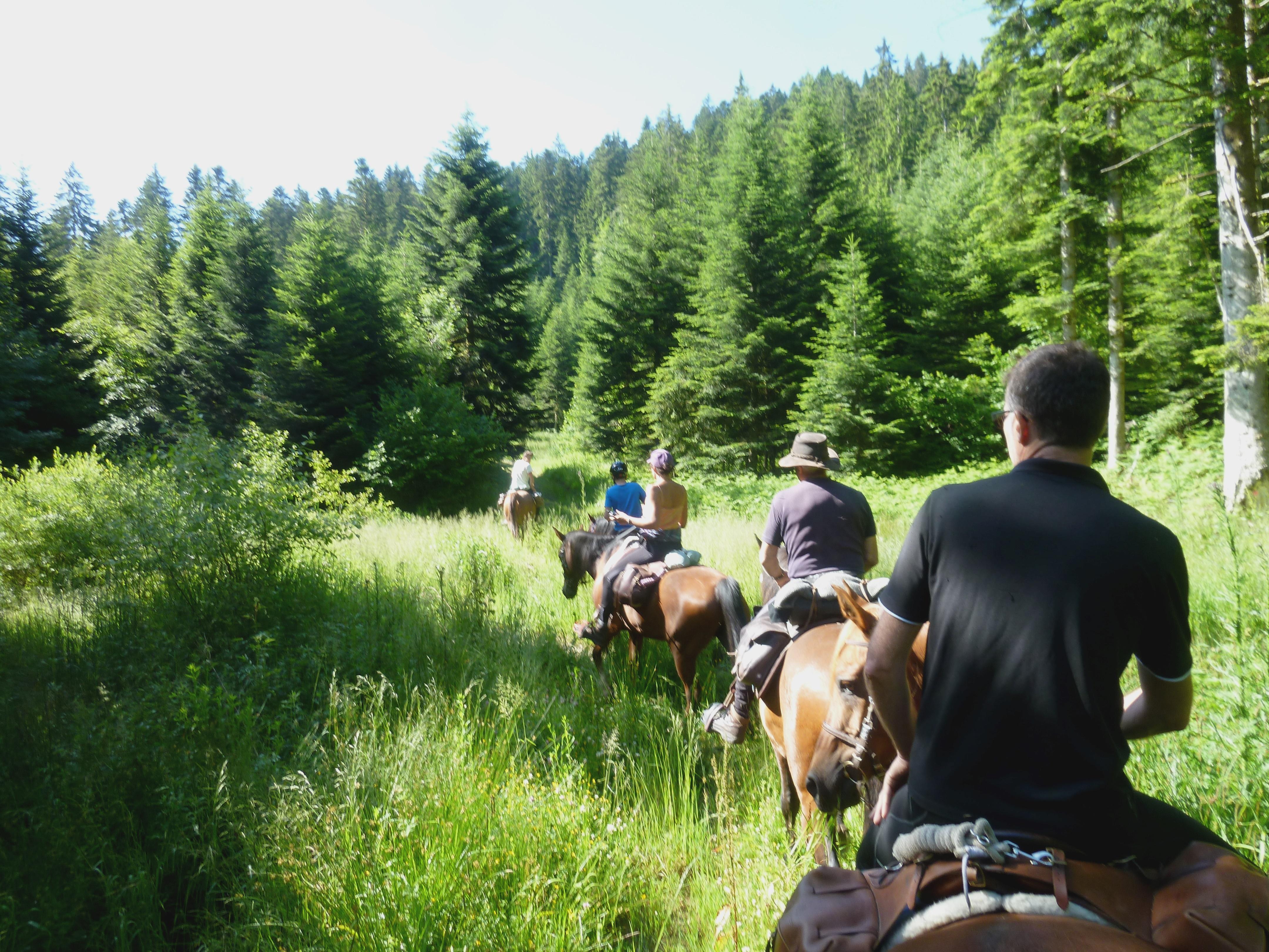 Ardèche sauvage : venez en Ardèche Buissonnière. : Ferme équestre Le Petit Rias - balades et randonnées équestres