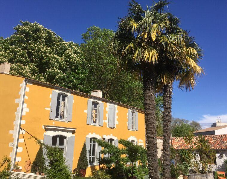 Facade de la maison avec mur en crépi jaune et volets gris, palmier devant la maison.