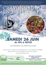 Crayonnades en tourbière - Montselgues
