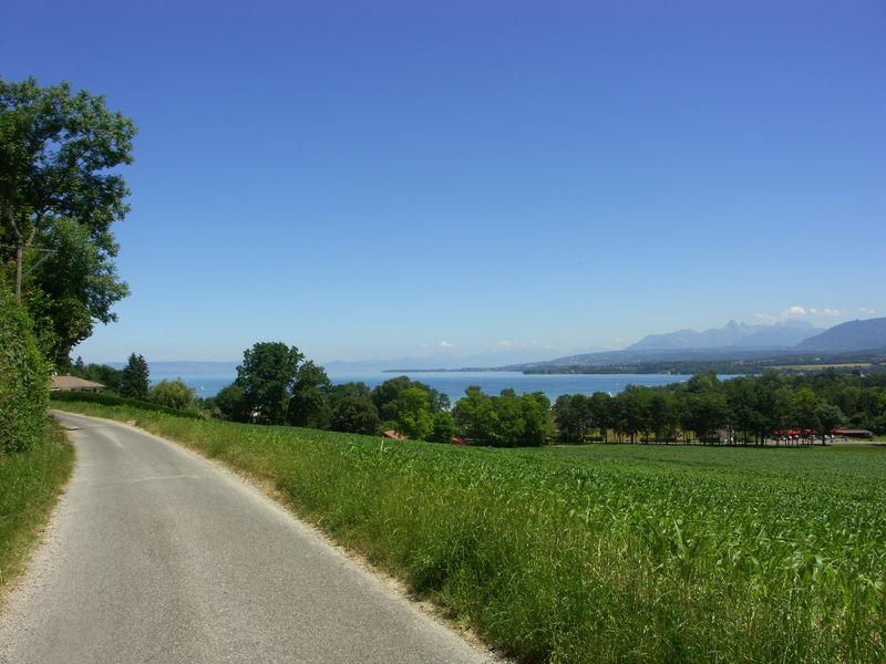 Chemin de Cérésy