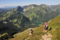 Mont de Grange-Abondance