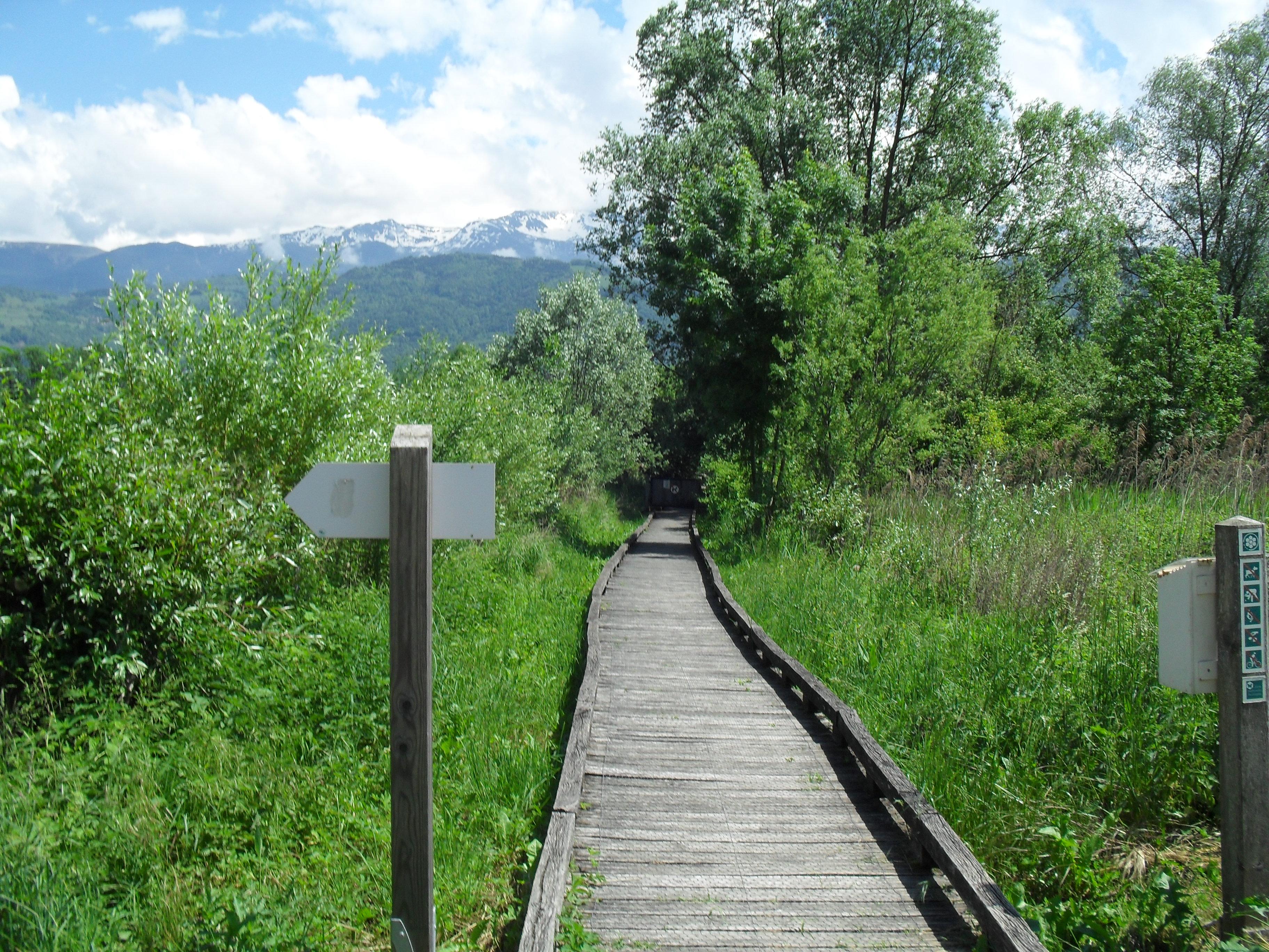 Sentier sur caillebotis
