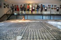 La Villa de Licinius