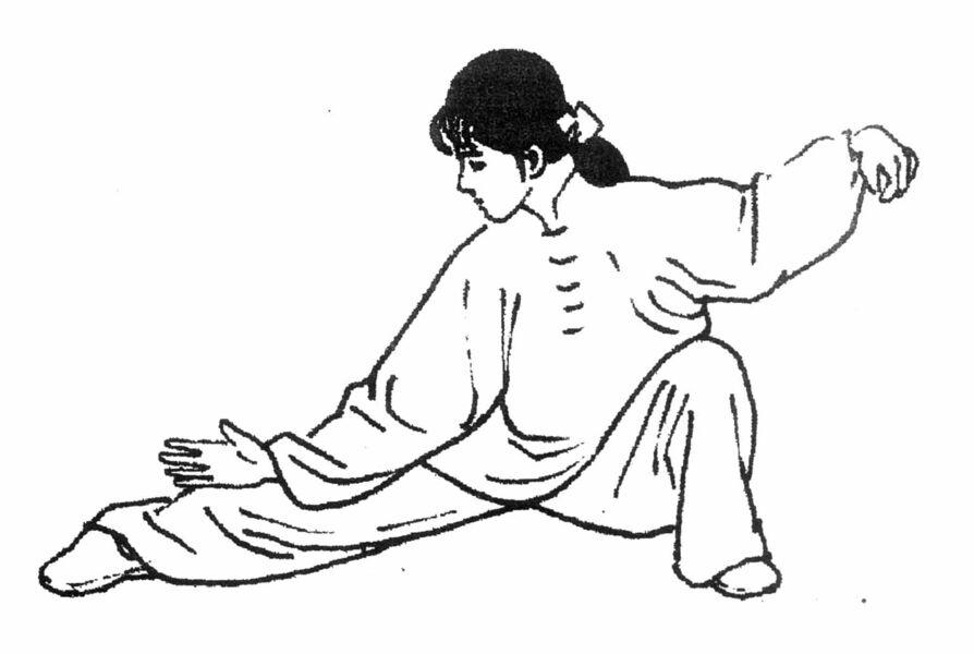 Reprise des Cours tai chi chuan et Qi Gong La Jeune Forêt