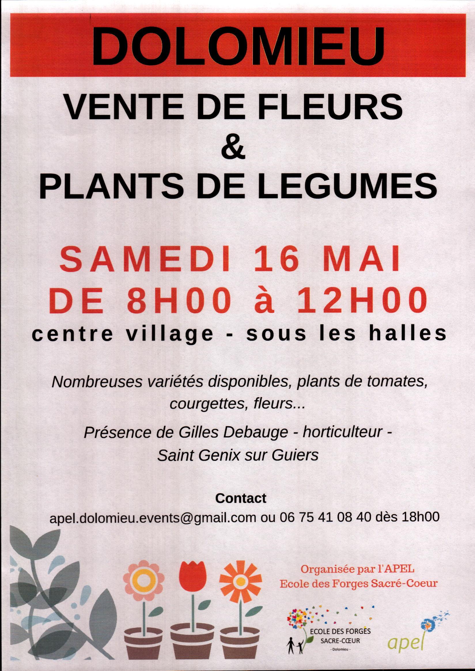 Vente de fleurs et plants de légumes