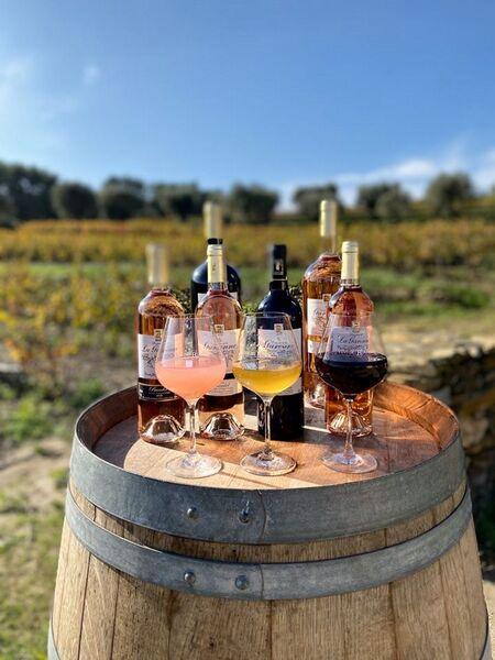 Domaine de la Garenne - Wine-tasting - Beatrix de Balincourt