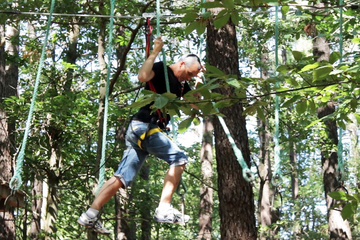 Sports : Parcours acrobatique en forêt