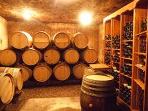 Balades en vignobles : Domaine Alain Voge - Saint-Péray