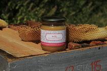 Découverte de la ruche et de l'univers des abeilles - Ruchers de Baud - Pailharès