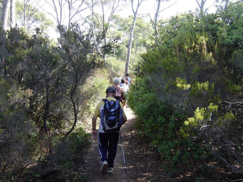 Randonnée Bormes crêtes et vallons des Maures