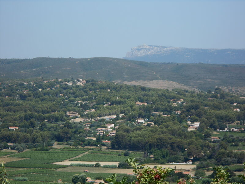 View of retirement home - Vineyards & Ste Baume mountain - Corinne Bonifay