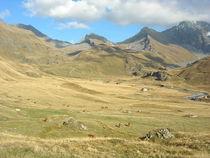Haute Route Glaciaire - Vallon du Clou