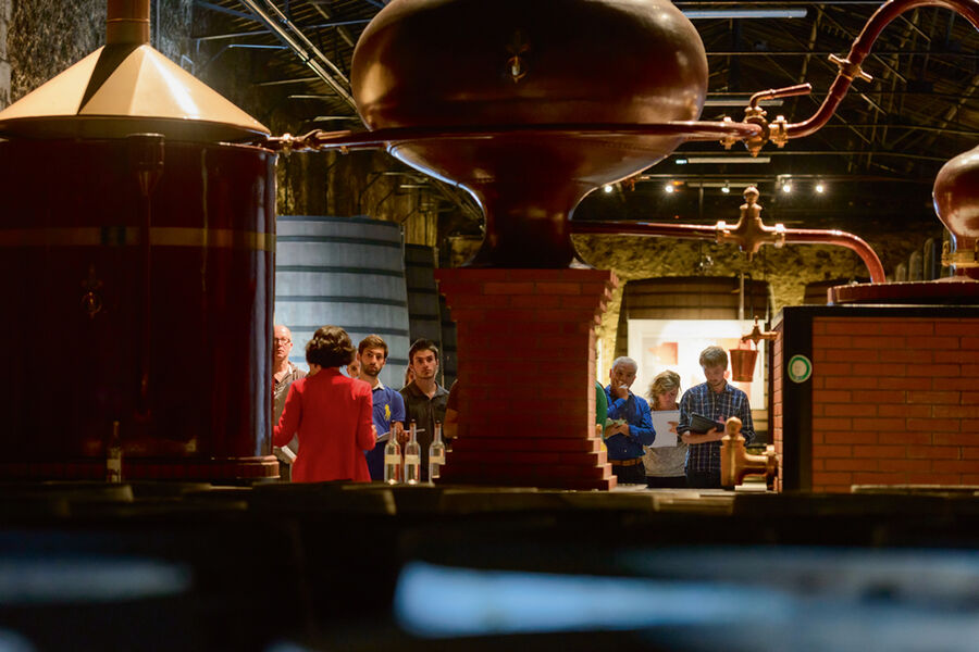 La distillation des Cognacs Rémy Martin