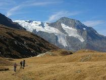 Haute Route Glaciaire - Vallon du Clou 3