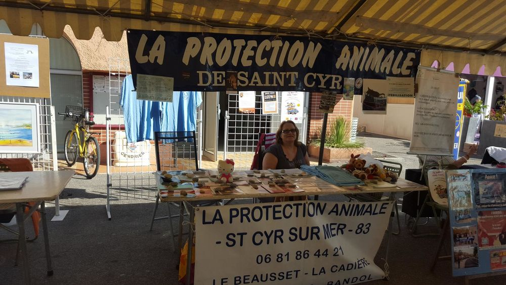 Protection Animale Saint-C - Protection Animale Saint-Cyr La Cadière - Protection Animale Saint-Cyr La Cadière